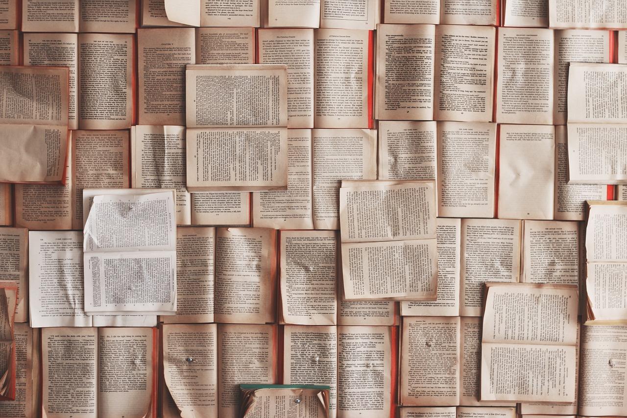 citanje-knjiga-knjige