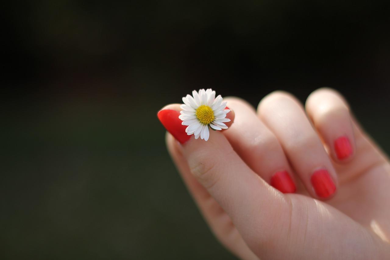 ruka-cvet