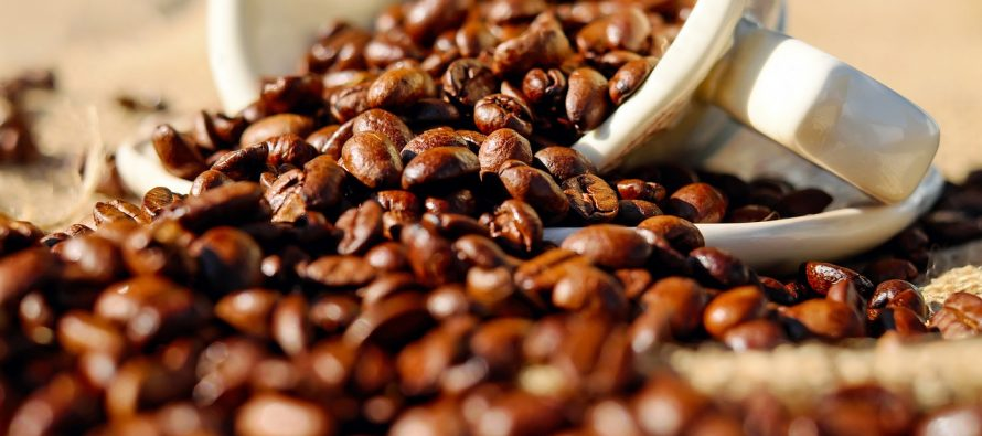 Koliko košta najskuplja kafa na svetu?