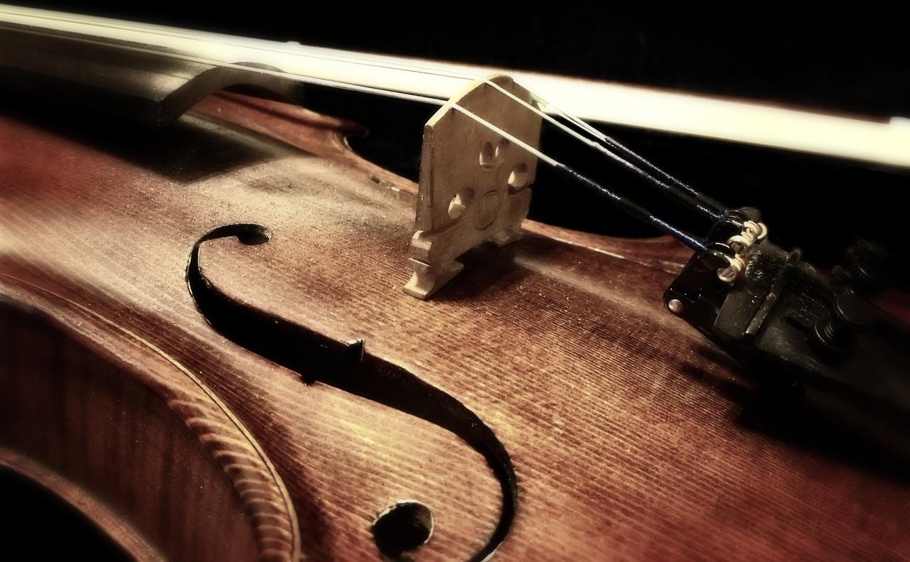 violina-foto