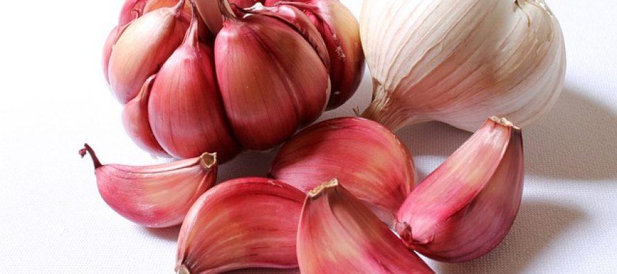 Koje namirnice su moćni antioksidansi?