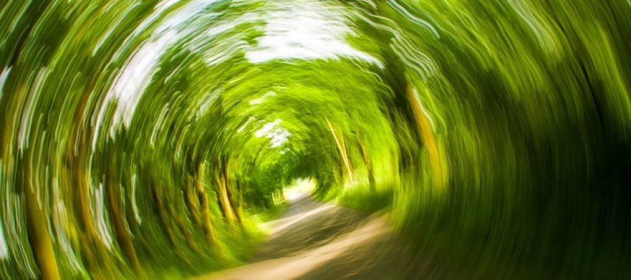 Zbog čega nastaje mučnina tokom vožnje?