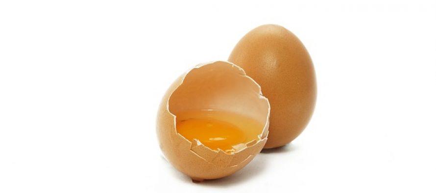 5 najčešćih mitova o jajima