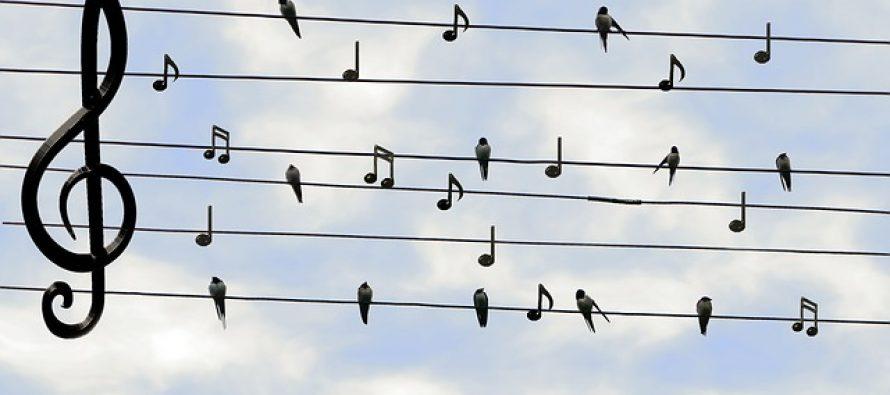 Ovo niste znali o muzici!