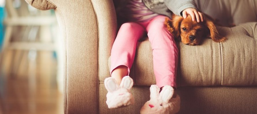 Pas kao kućni ljubimac produžava život?