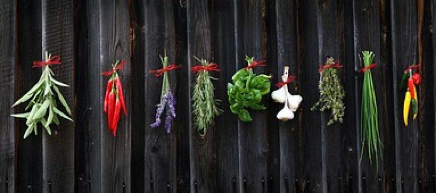 Sušene ili sveže biljke: Šta je zdravije?
