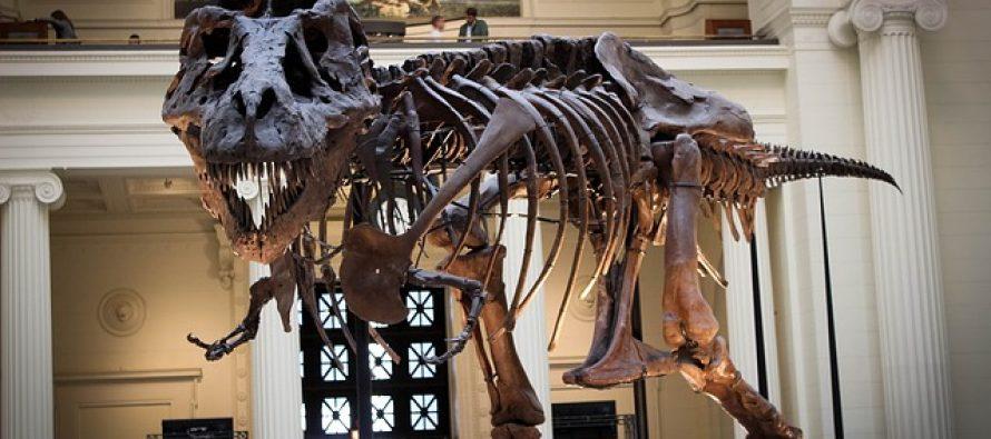 Otkriven dinosaurus koji je bio veći od T-Reksa!