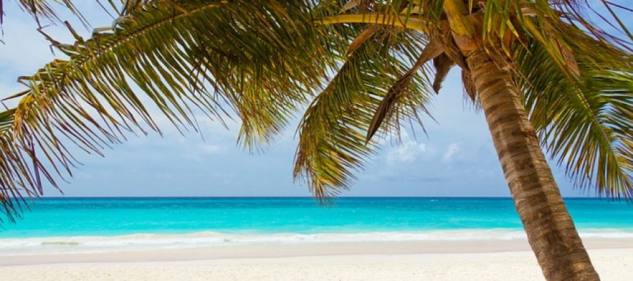 Ne tako rajski razlog zašto su najlepše plaže sveta bele
