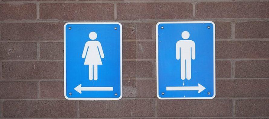 7 najprljavijih delova javnih toaleta