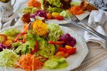 Prednosti i mane veganske/vegeterijanske ishrane