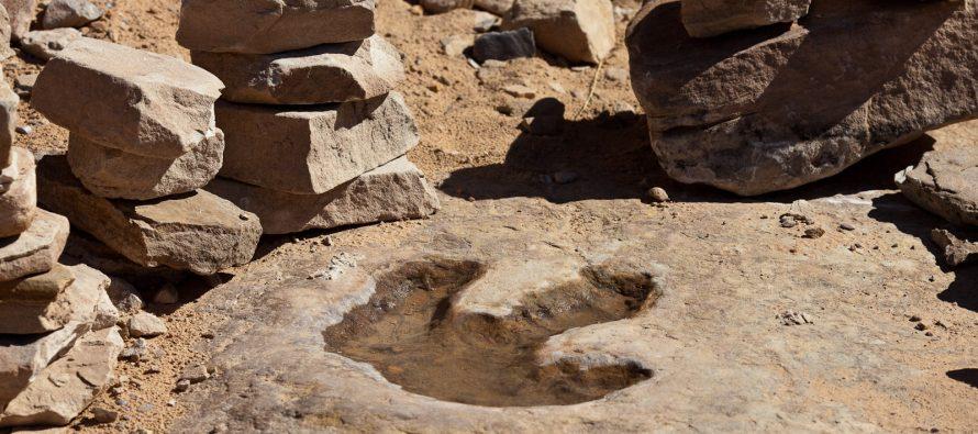 Otisak stopala dinosaurusa na škotskom tlu