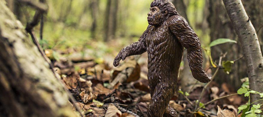 Bigfut – divlje čudovište