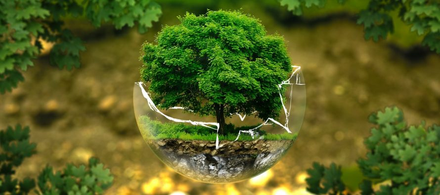 Šta je Dan ekološkog duga?