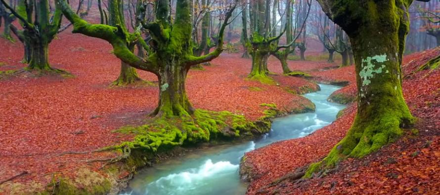 Sever Španije skriva mističnu oazu