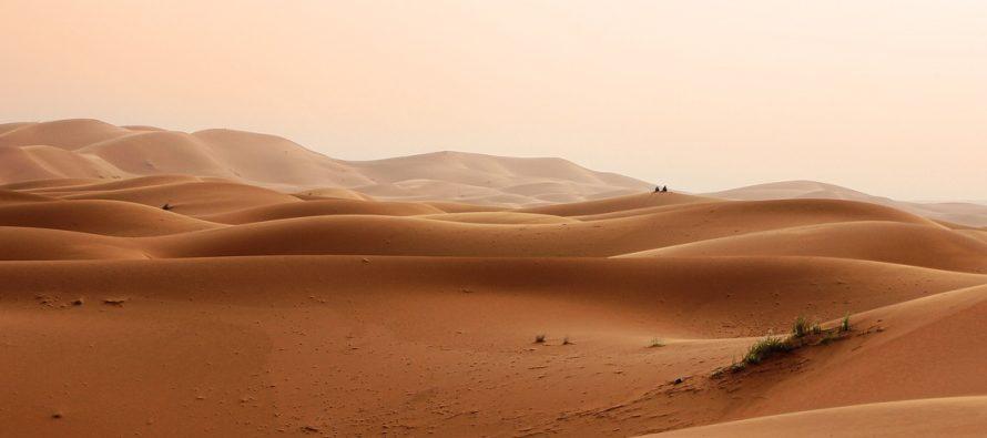 Sahara postaje plodna?
