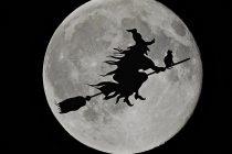Ko su bile veštice iz Salema?