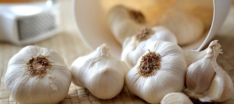 Zašto je dobro jesti beli luk?