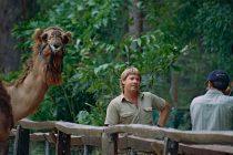 Ovo je jedina životinja koje se Stiv Irving plašio