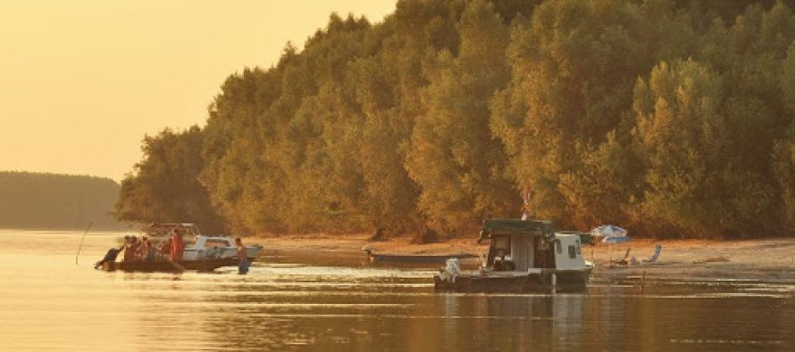 Tajna dunavska oaza nadomak Novog Sada
