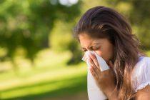 Kako se pripremiti i kako prepoznati alergije