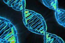 Bolesti koje se nasleđuju po ženskoj liniji