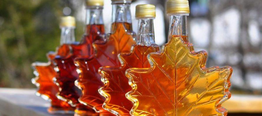Javorov sirup – riznica lekovitih sastojaka