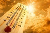 Šta je toplotni udar i kako ga prepoznati?